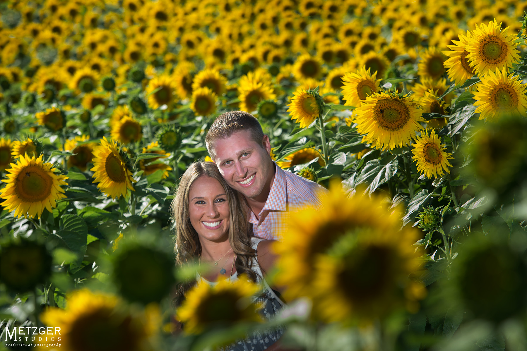 engagment_photography_colby_farm_sunflowers