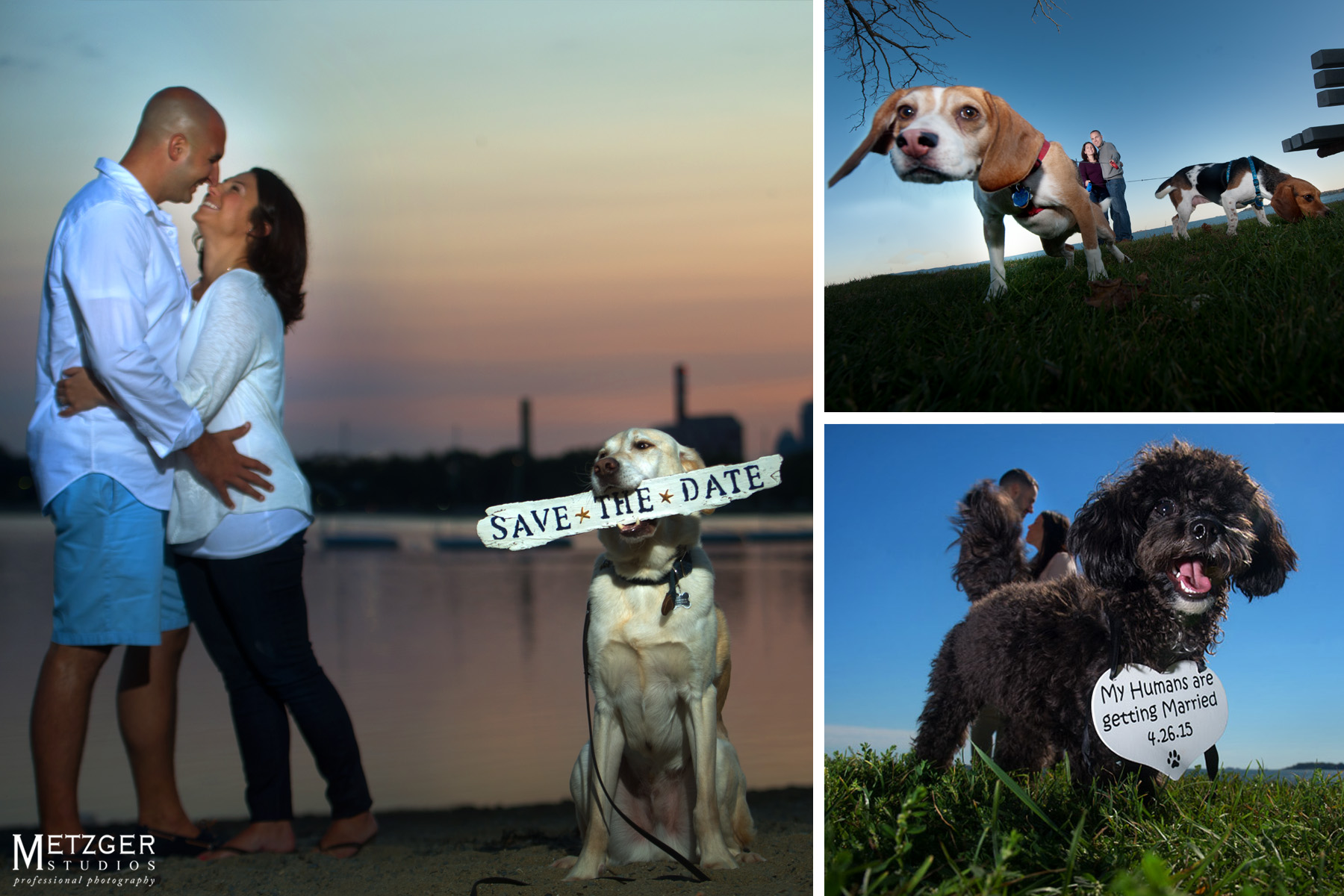 engagment_photography_dogs